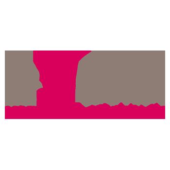 logo lessonia
